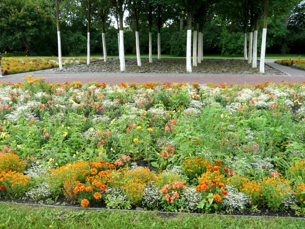 Colourful perennial bed in the park