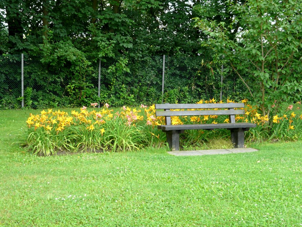 Simple and effective highlighting of park benches