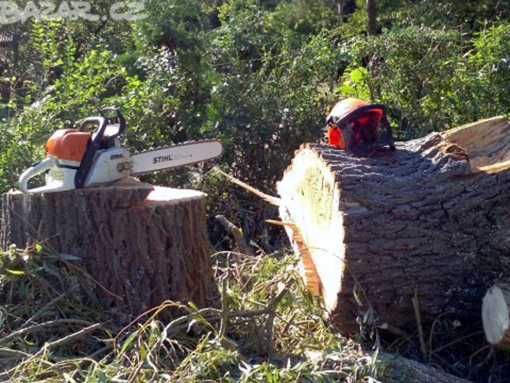 Felling a tree by falling into open space