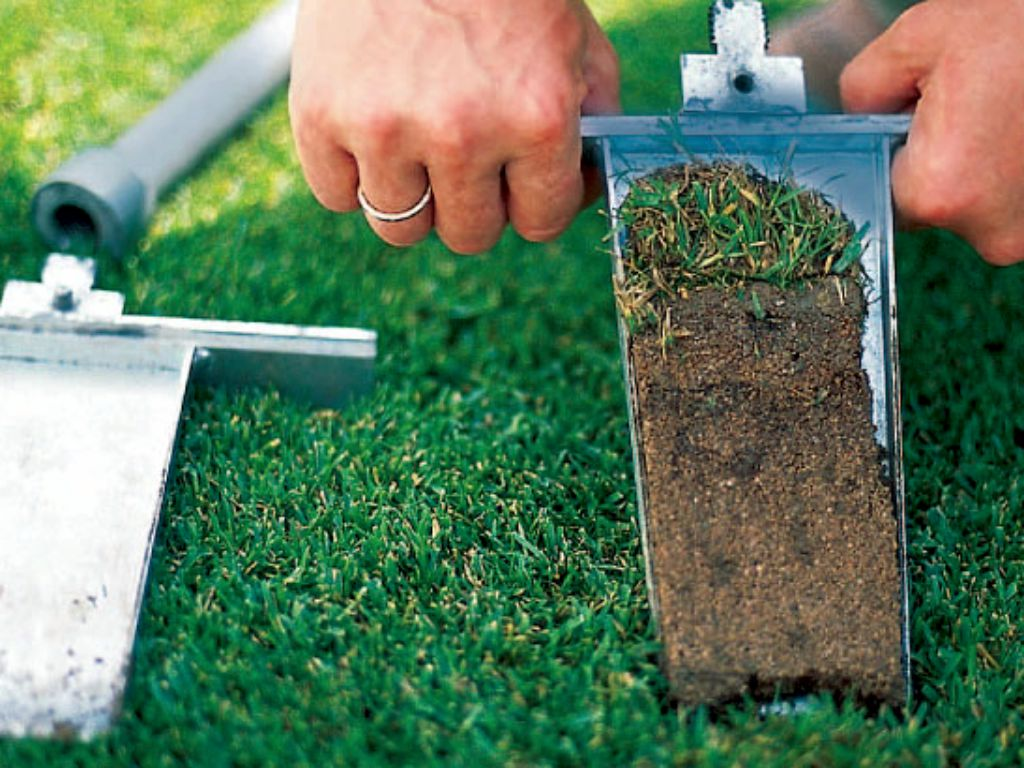 The quality of the subsoil under the lawn is important for its growth