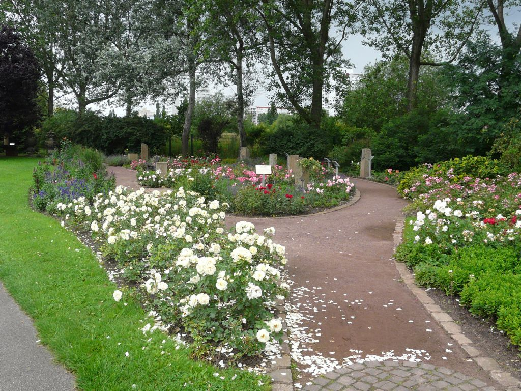 Blooming park arrangement with a predominance of roses