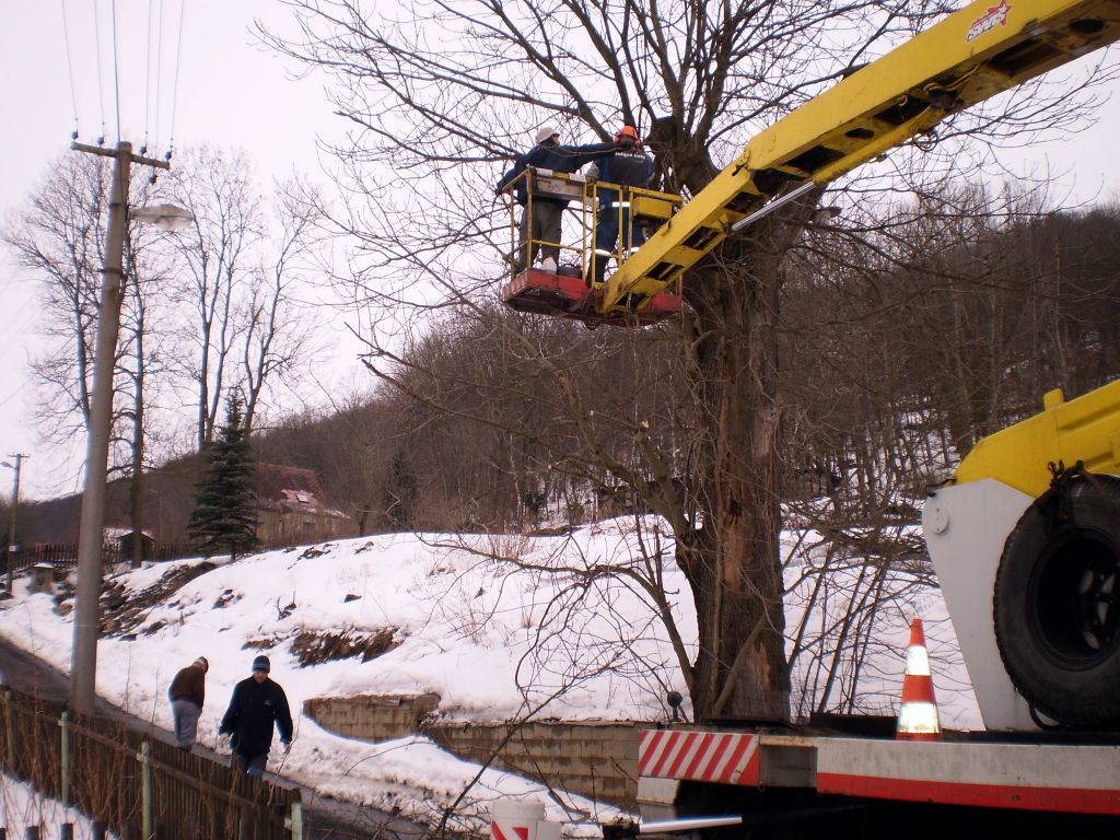 Removing trees from platform cars