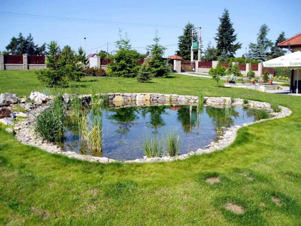 Ornamental pond in the garden
