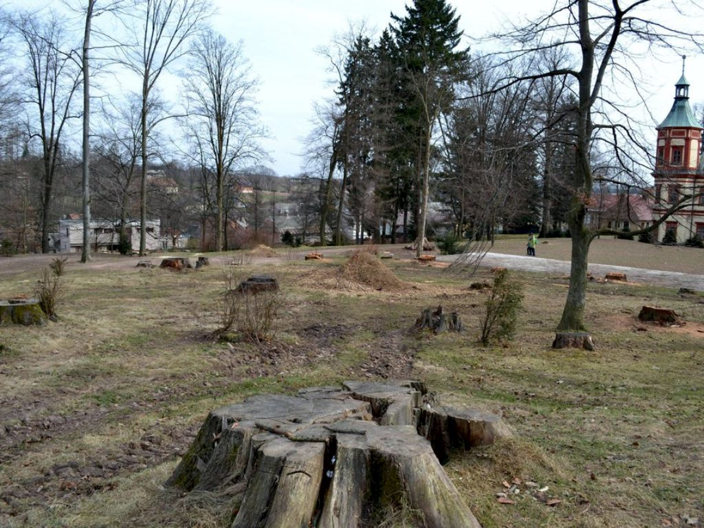 Assessment of the old park and subsequent development rescue