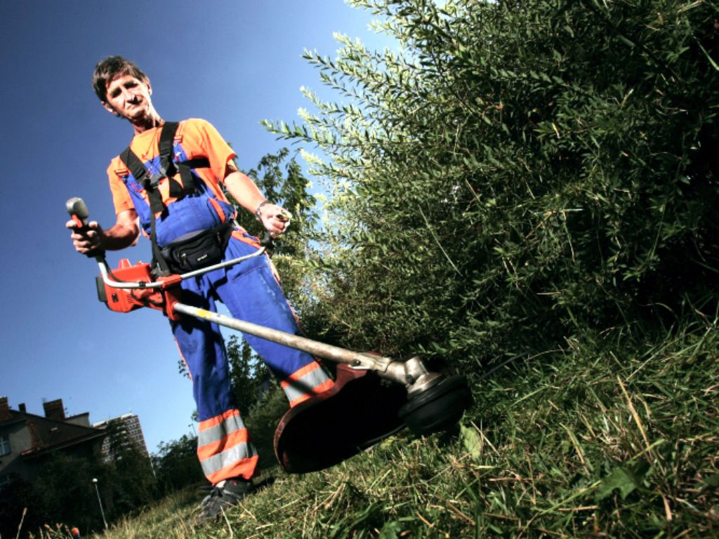 Cutting overgrown grass with a brushcutter