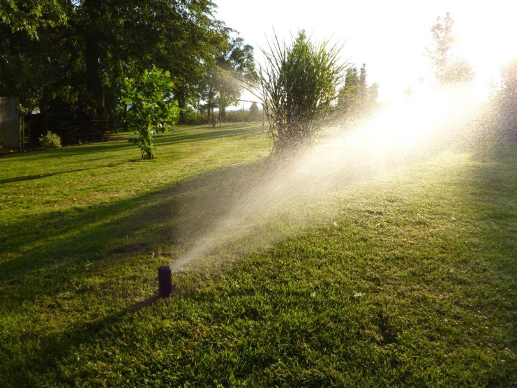Turbine Sprayer for large lawns
