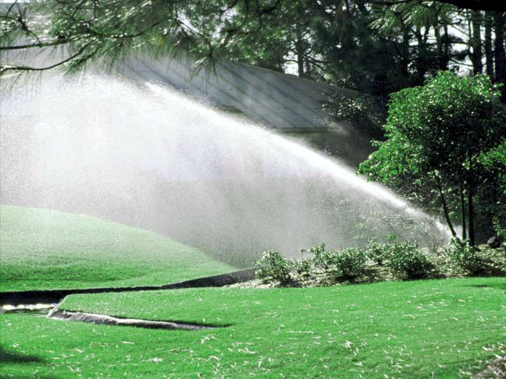 Demonstration of irrigation in the park