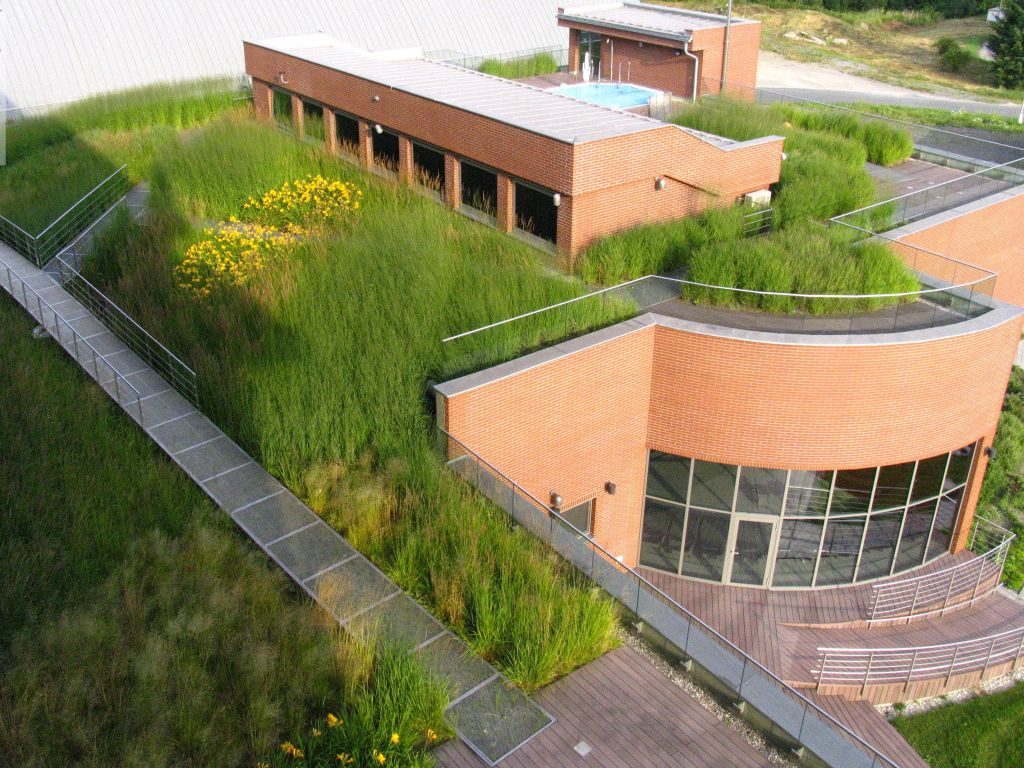 Extensive concept with a predominance of ornamental grasses