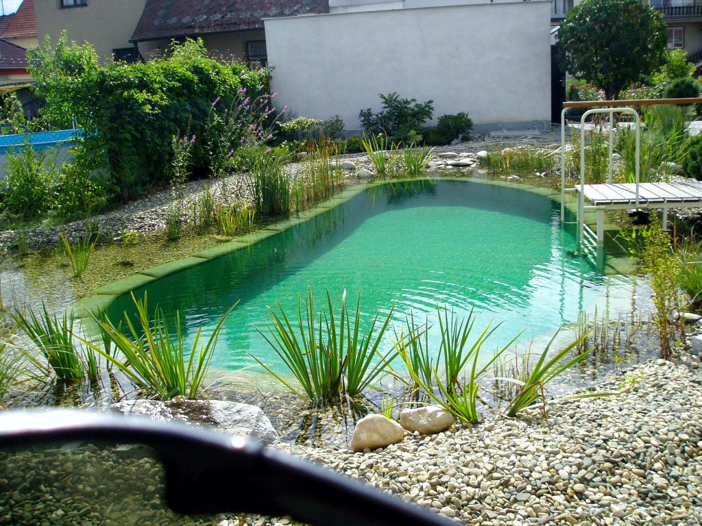 Spacious pond with a depth of 2.5 metres.