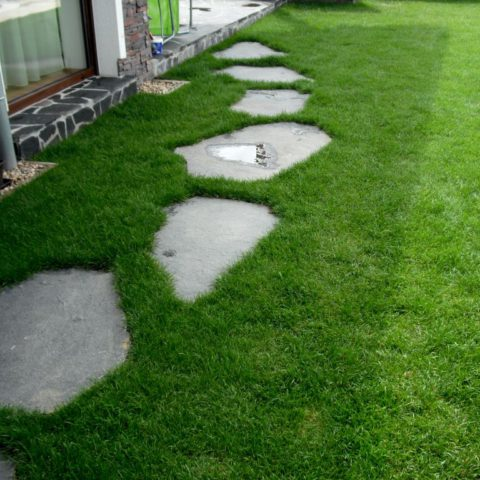 Basalt stepping stones in lawn