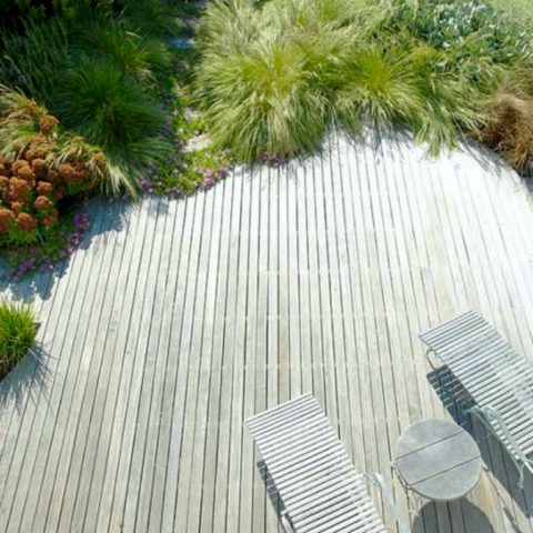 Terrace with dense beautiful grass planted with perennials