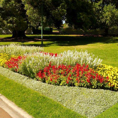 Park landscaping in Spa Teplice