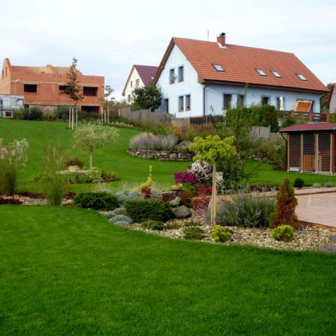 View of part of the garden, showing the transition between sown and carpeted lawn