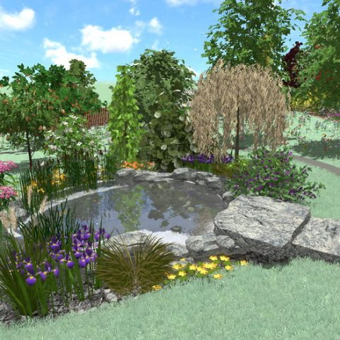 Pond in the garden with a stone bridge